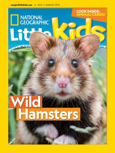 National Geographic - Little Kids 杂志 (3 - 6岁) $268